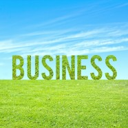 Starting a Green Business